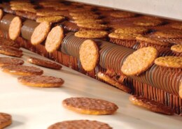 Which is the best Snacks Manufacturing Company in India?